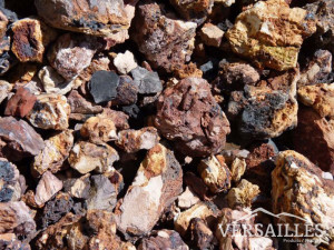 pierre écorce p8-5